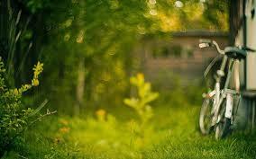 grass bike image